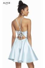 Alyce Paris Dress 3880