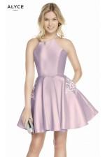 Alyce Paris Dress 3887