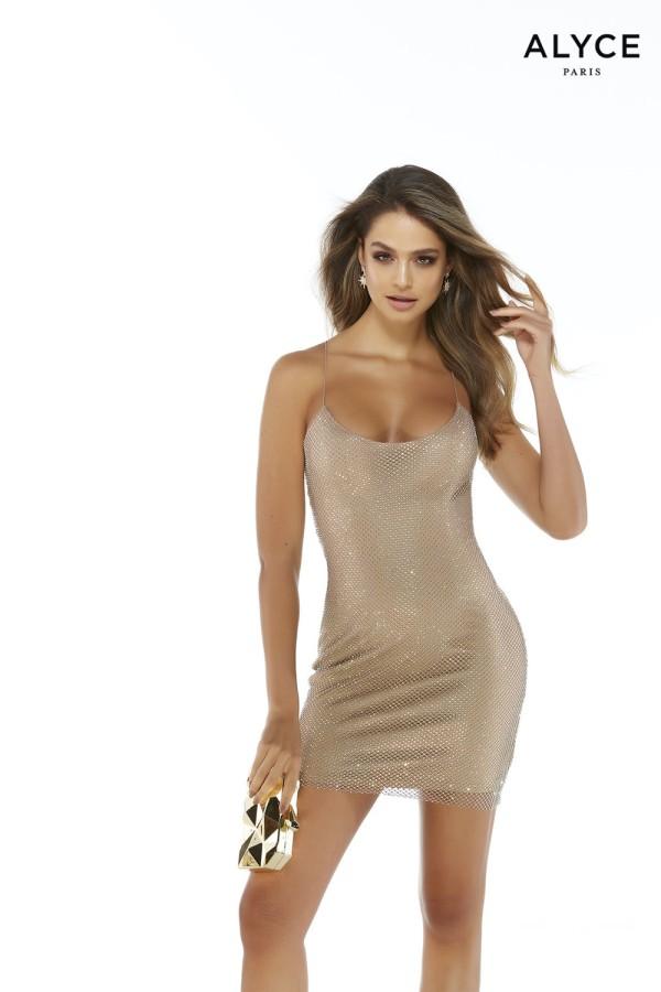 Alyce Paris Dress 4244