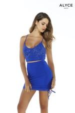 Alyce Paris Dress 4276
