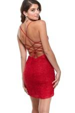 Alyce Paris Dress 4366