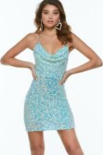 Alyce Paris Dress 4373