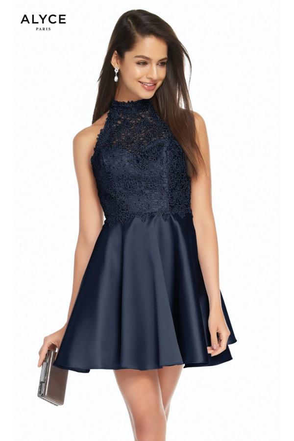 Alyce Paris Dress 3847
